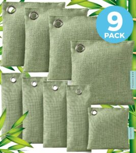 Qendon Bamboo Air Purifying Bag